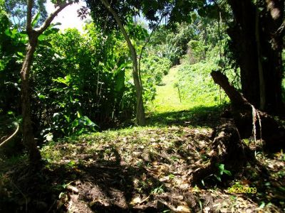 Bocas del Torro Panama 18 Acres waterfront Titled land For Sale