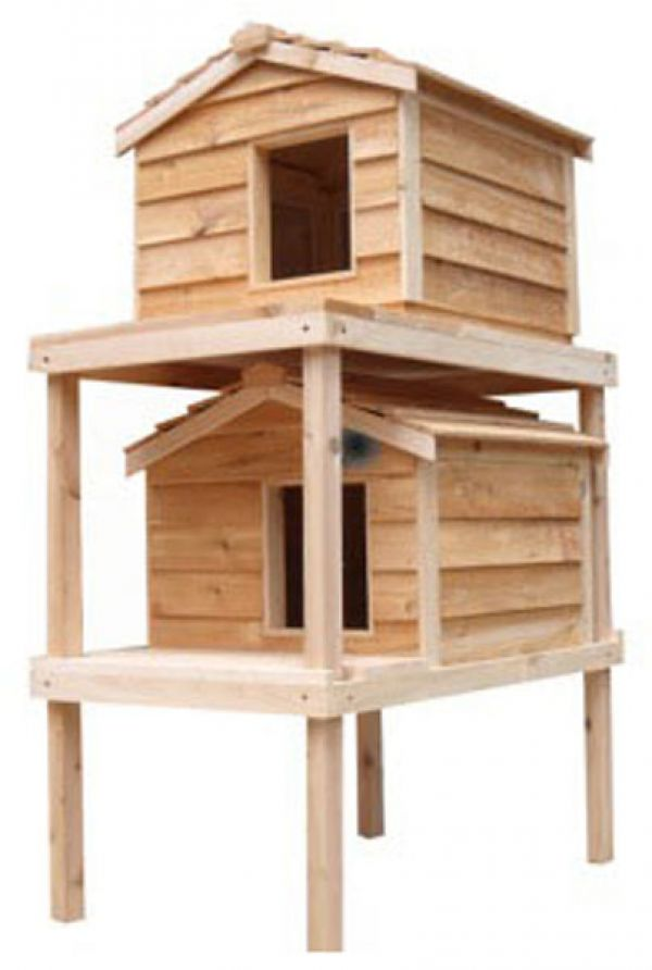 Outdoor Cat House Design Plans: Large Insulated House For Outdoor Cats From