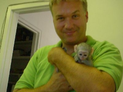 playful baby capuchin monkeys looking for a caring home to go