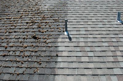 Moss on your roof? We can clean that off.