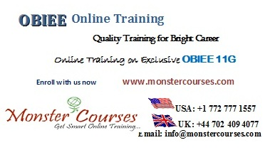 OBIEE Online Training by experts @ Monstercourses