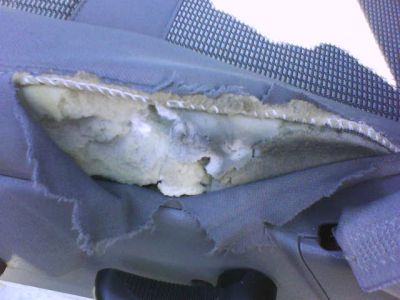 MOBILE CAR INTERIOR REPAIR (WE COME TO YOU)