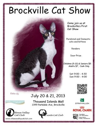 Brockville Cat Show